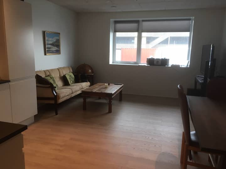 Room in shared and cosy apartment with good view.