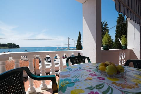 Cozy apartment Toni 2+2 with sea view, pets alowed