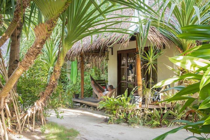 Kawili Cottages  - Surf shack