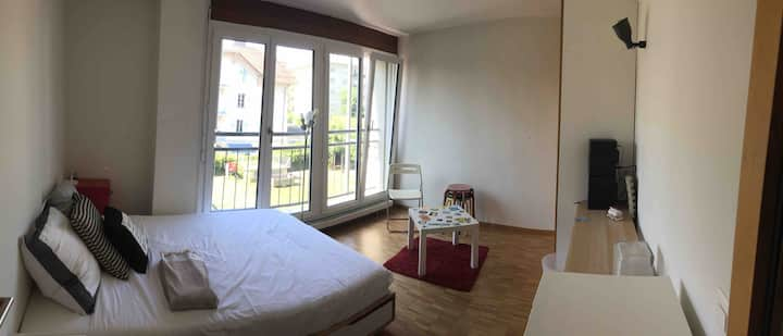 Double Room with a rooftop garden in Renens-Gare