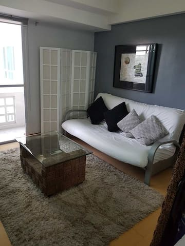 Living room fully airconditioned