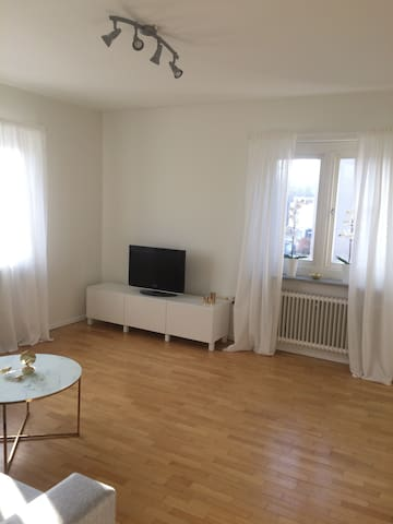 Central apartment of 58 sq.m. - Linköping - Huoneisto