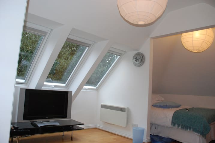 Velux windows for light and ventilation to lounge area; TV with multi-channel Freeview