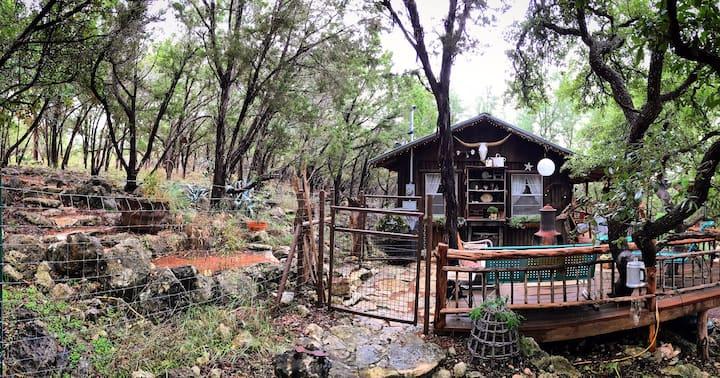 Salvation Cabin