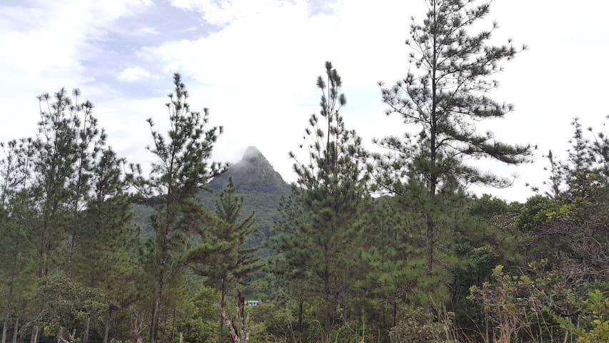 Cabaña en las faldas del Cerro Chichibali - Penonomé - กระท่อม