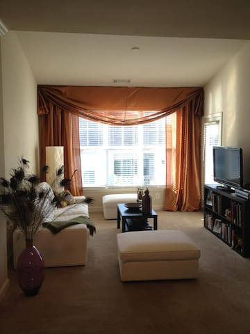 Live in Downtown Columbia - Columbia - Appartement