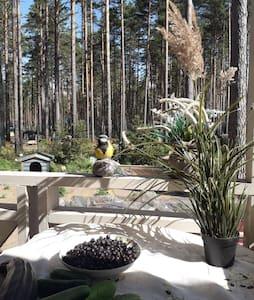 Уютный домик с видом на сосновый лес.