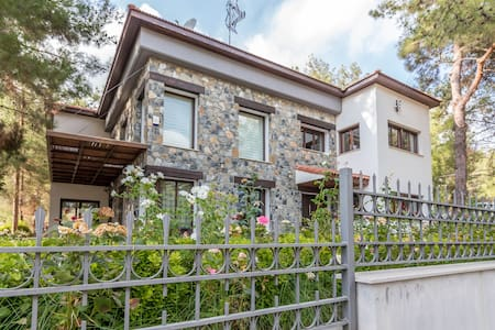 Moniatis Luxury Forest Villa - Moniatis - Villa