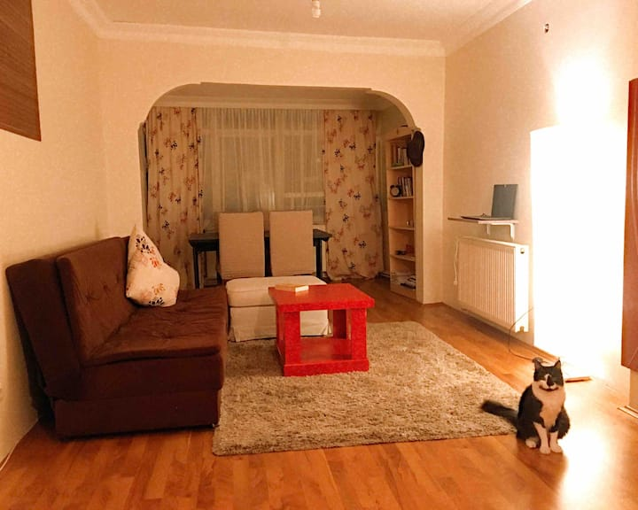Accommodation in a peaceful place in Beşiktaş