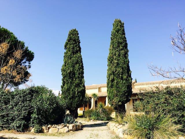 Mas Languedocien très spacieux - Pinet - Huis