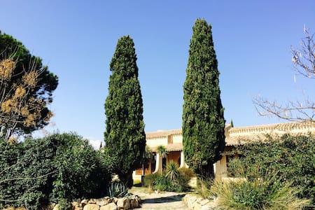 Mas Languedocien très spacieux - Haus