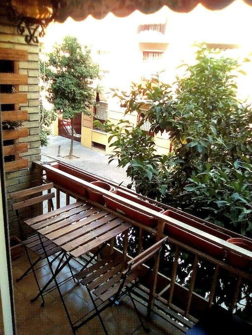 El piso dispone de un luminoso balcón, decorado con plantas y flores.