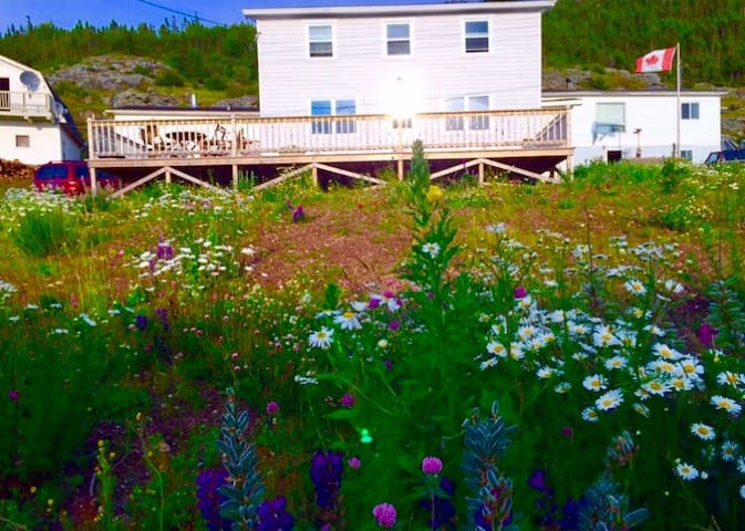 Eastport Salvage NL Saltbox Weekly Rentals Only