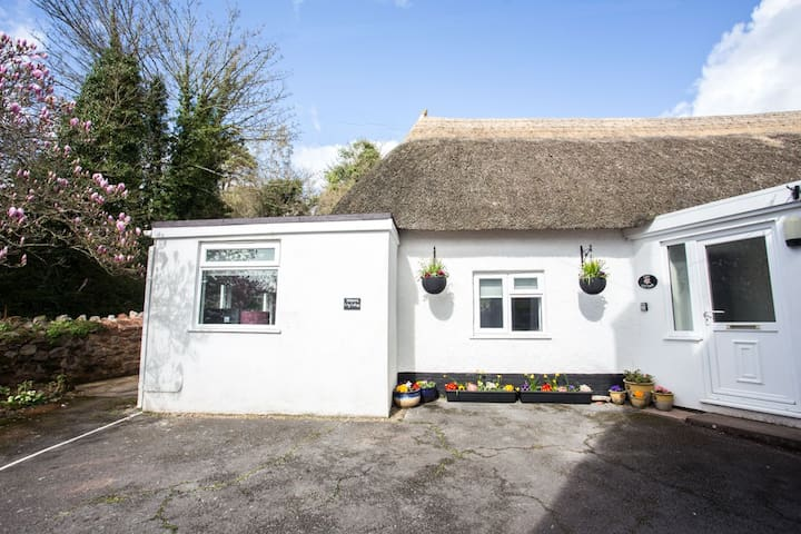 Lily Cottage - Torbay - Apartament