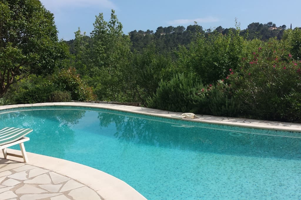 The pool and terrasse overlook woodlands