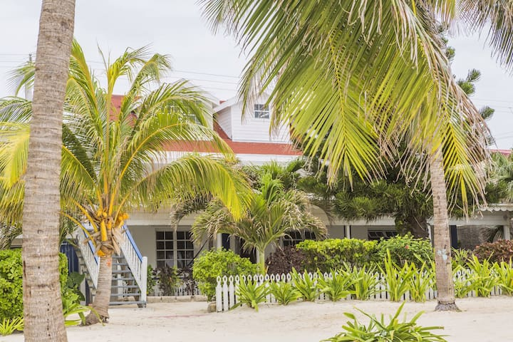 Casa Brisa - San Pedro town - House