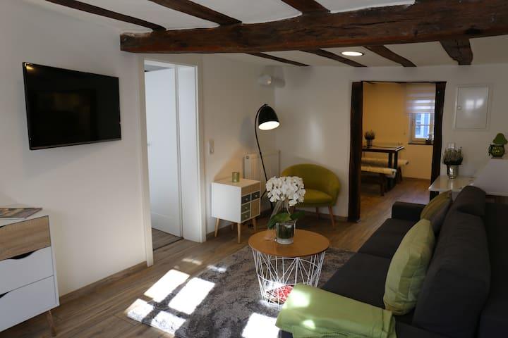 Malerwinkel im historischen Fachwerkhaus - Michelstadt - Leilighet