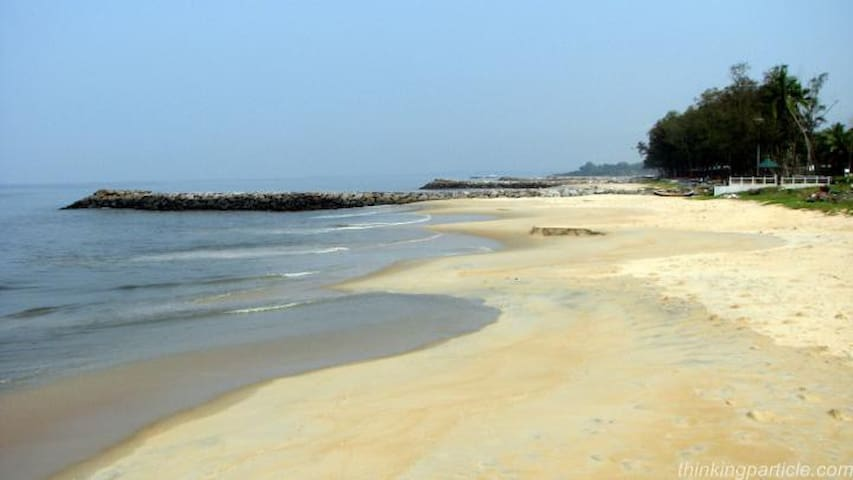 This is the famous Kappad Beach and connects to the back waters and look forward for a quite boat ride.