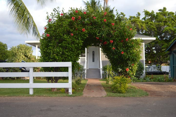 Steps to Beach,on Front St,The Lahaina Beach House