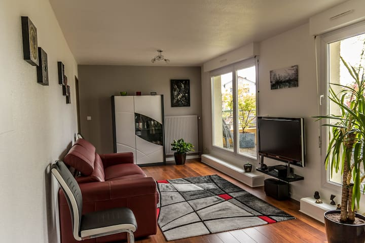 Très bel appartement calme, lumineux avec terrasse - Straatsburg - Appartement