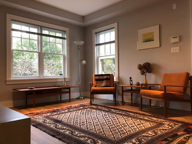 Cozy and convenient apartment in Cleveland Park