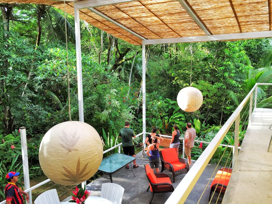 Jungle views 360 degrees on our roofed deck.
