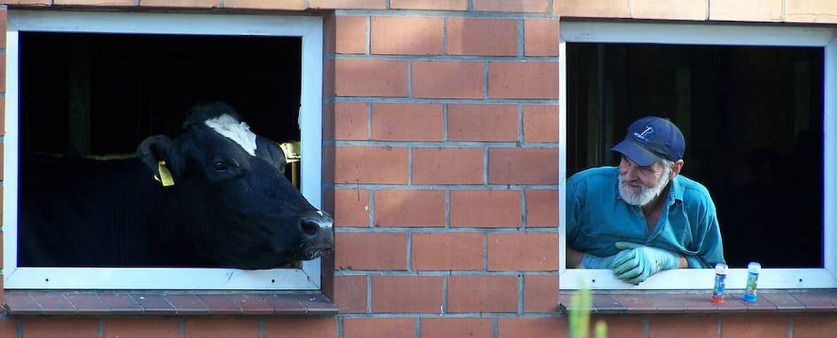 Ferienbauernhof Müller an der Nordsee: FeWo 3 - Neuschoo - Apartment