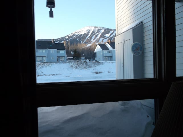 View of the mountain and pond from the living room