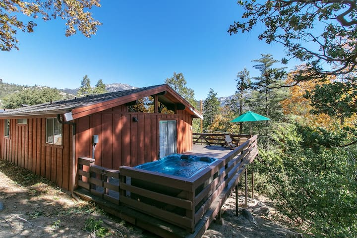 New listing! Raccoon Rock - Charming Hot Tub Cabin