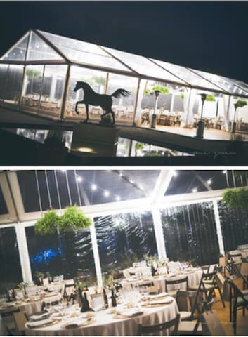 Equus Events