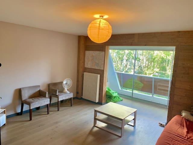Spacieux appartement à La Doua