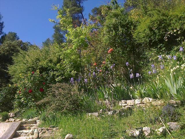 Loft de 100m², rez avec terrasse dans la verdure.