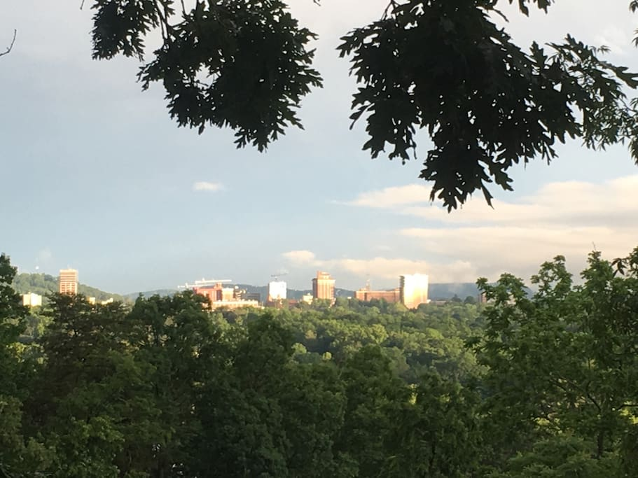 City view from our property.