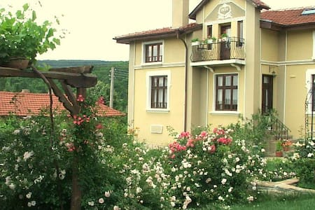 Sunny and Cosy Apartment with Lovely Garden - Osmar - Apartment - 2