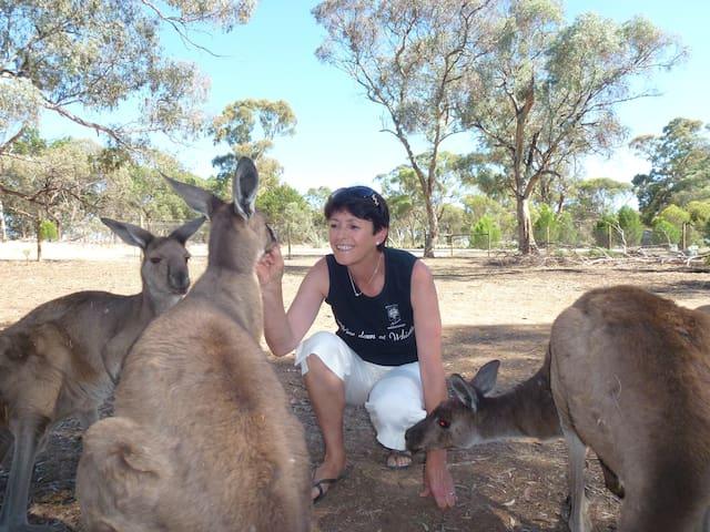 Help feed our rescued Kangaroos.