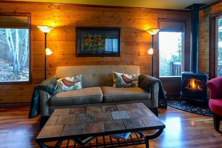 Hayden View Cabin - Hayden - Maison