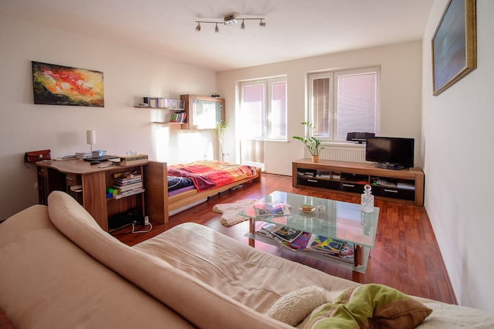 Beautiful apartment with private parking
