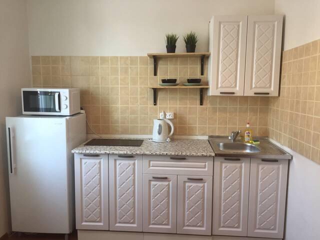 1001room Квартира в Академгородке. Живи как дома!
