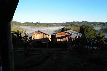 CABAÑA CERCA JARDIN BOTANICO WILSON - San José