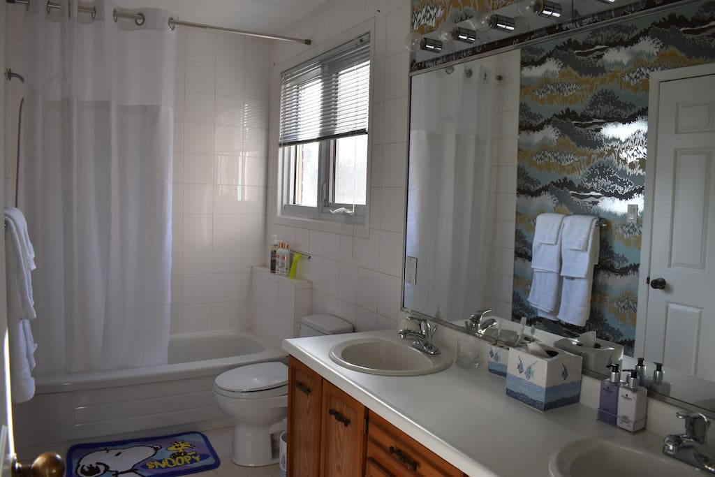 Double sink, south facing window