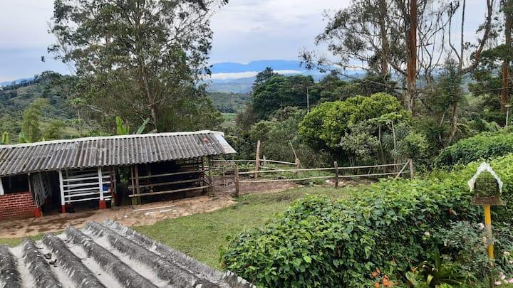 Granja orgánica con aire puro y paisajes naturales