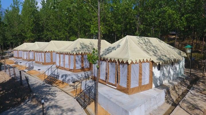 LivingStone Luxury Swiss Cottages Dharmshala
