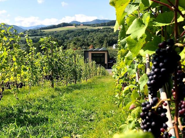 Le Reve winery ~葡萄酒夢工房~