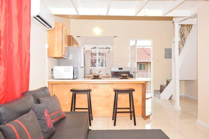 Modern Kingston Apartment 2BR/1Bth