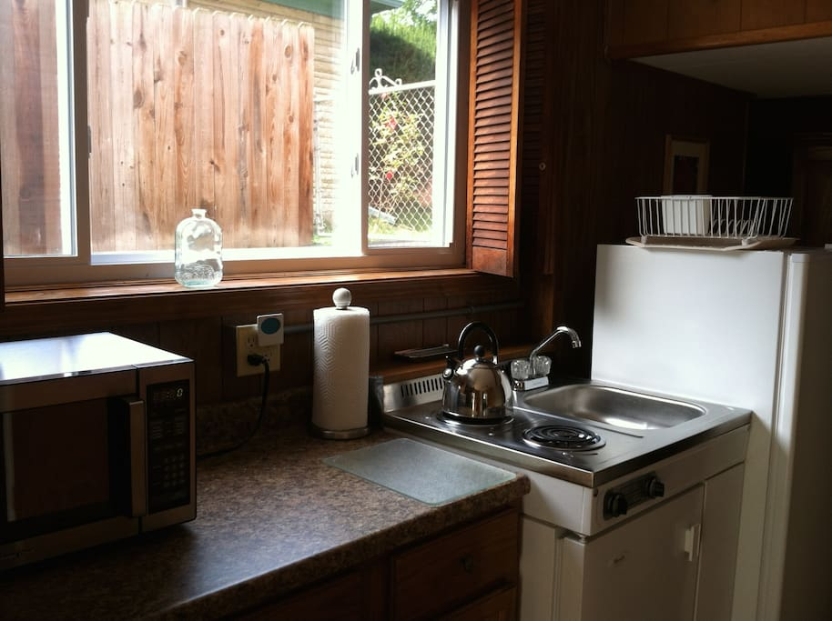 Kitchen with microwave, 2 burners, and fridge.