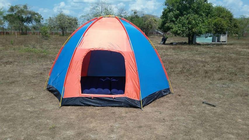 Servicio de camping en Marroka