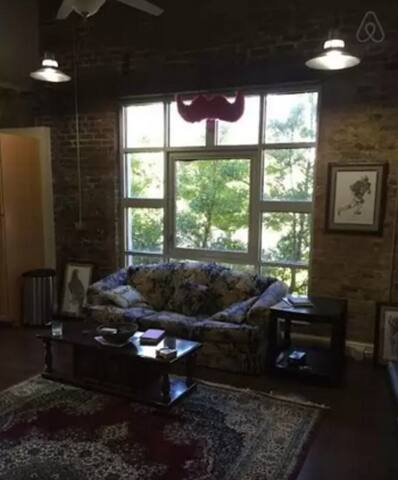 AMAZING apartment downtown RM 2