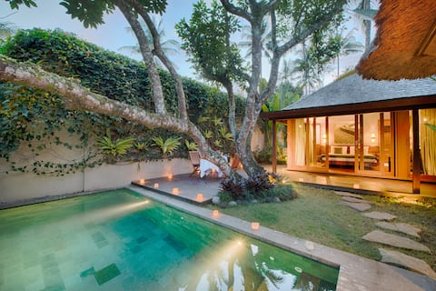 Nature Ricefield Villas with Private Pool