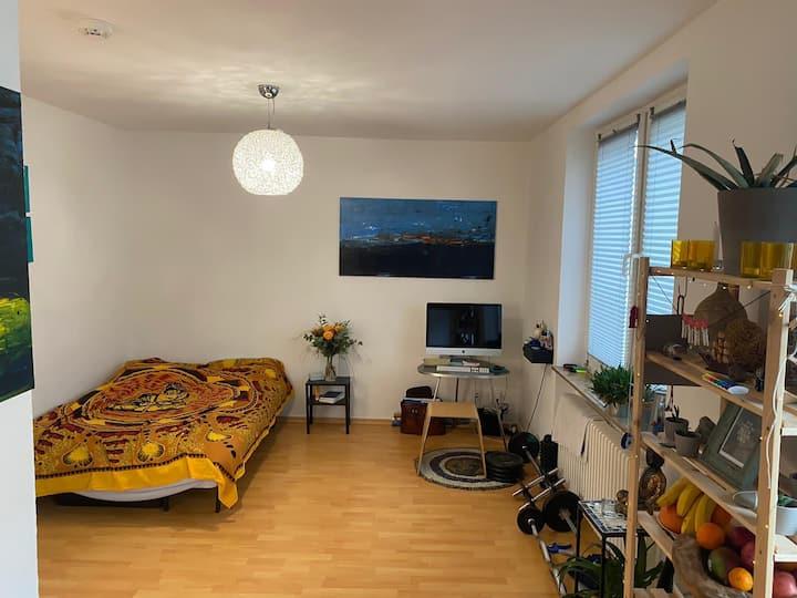 Helle gemütliche Wohnung direkt in Flingern
