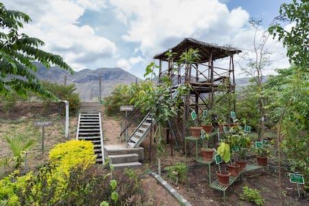 A Day Trip To An Organic Farm in a village